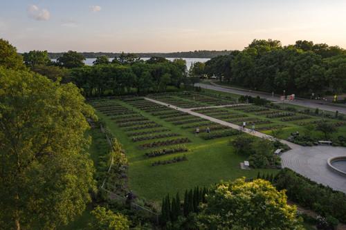 Minneapolis Rose Garden Aerial