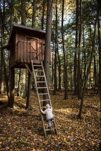 Boy Climbs Northwoods Tree Hosue