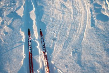 Northwoods Backcountry XC Skiing