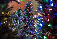 Christmas Tree Maze at Christmas Wonderland in Bakersfield, CA