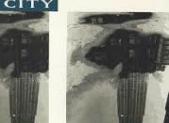 (WRITER) Paul Austor_ Literature study