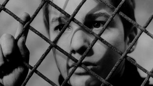 (Dir) 400 Blows, Power of Objectivity view that shows character's emotional status.