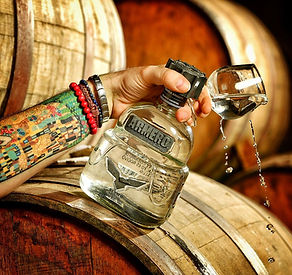 Tequila and barrels.JPG