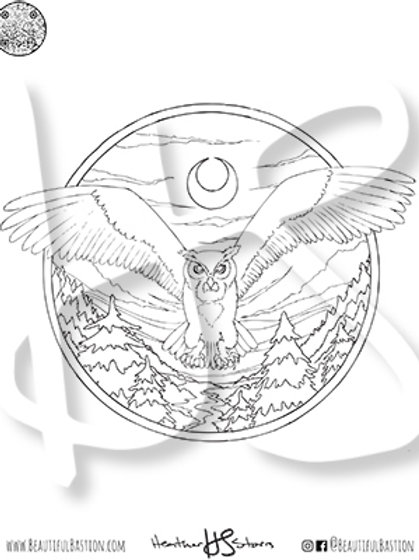 Owl 8.5x11 Coloring Page