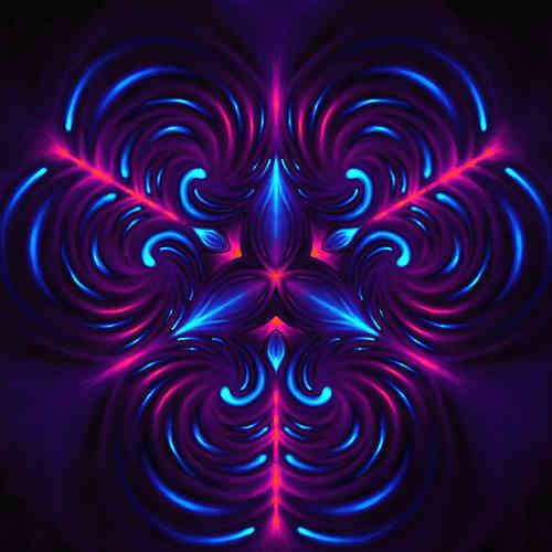 Purple Organic