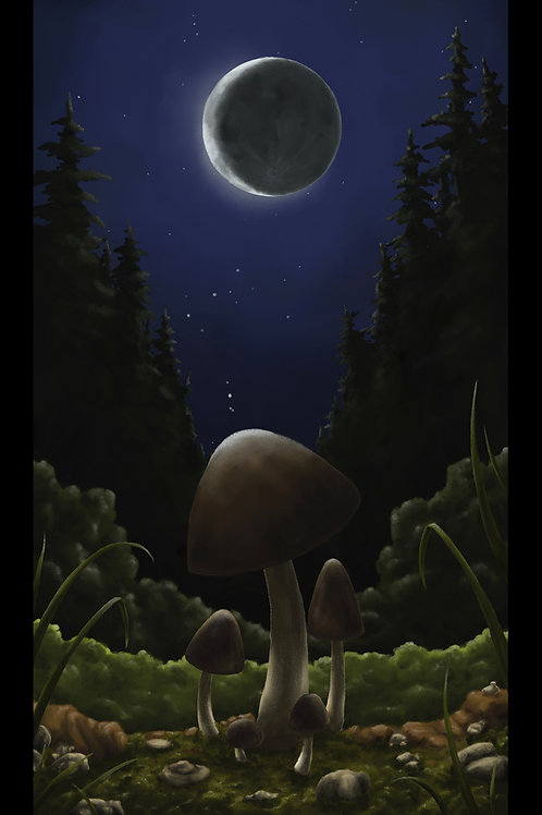 Moonlit Mushrooms Prints