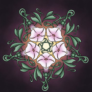 Morning Glory Mandala