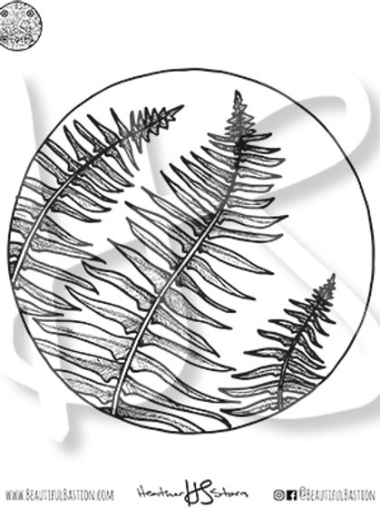 Ferns 8.5x11 Coloring Page