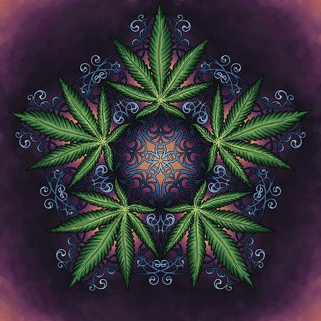 mandala with indica cannabis leaves and art nouveau filigree