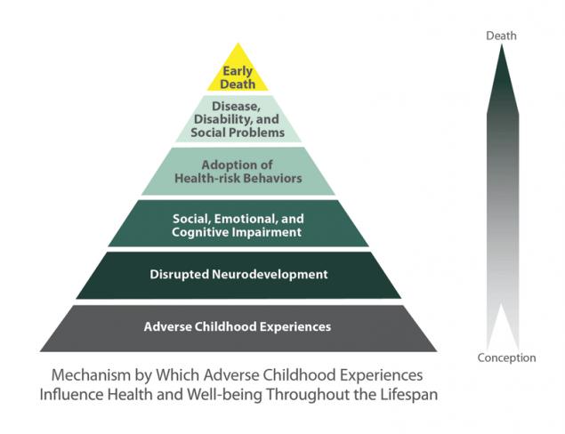 CDC ACE Pyramid