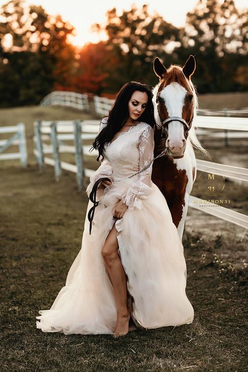 Horse Shoot_0089 copy.jpg