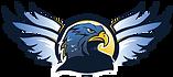 hawk_wings.png
