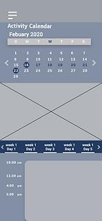 Activity calendar.png