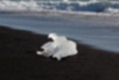 קרחון 1 copy.JPG