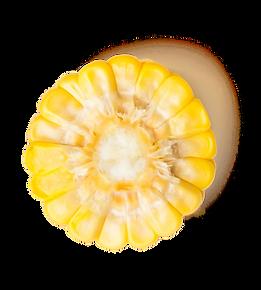 corn-circle.png