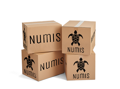 Grunge-numis-boxes.png