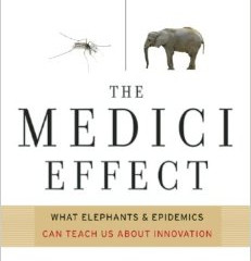 The Medici Effect-the birthplace of innovation