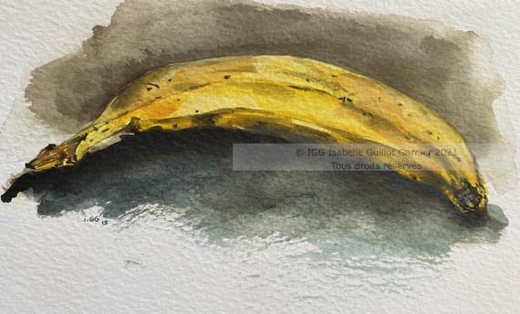 Banane © IGG 2021