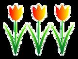 3 tulips rev.png