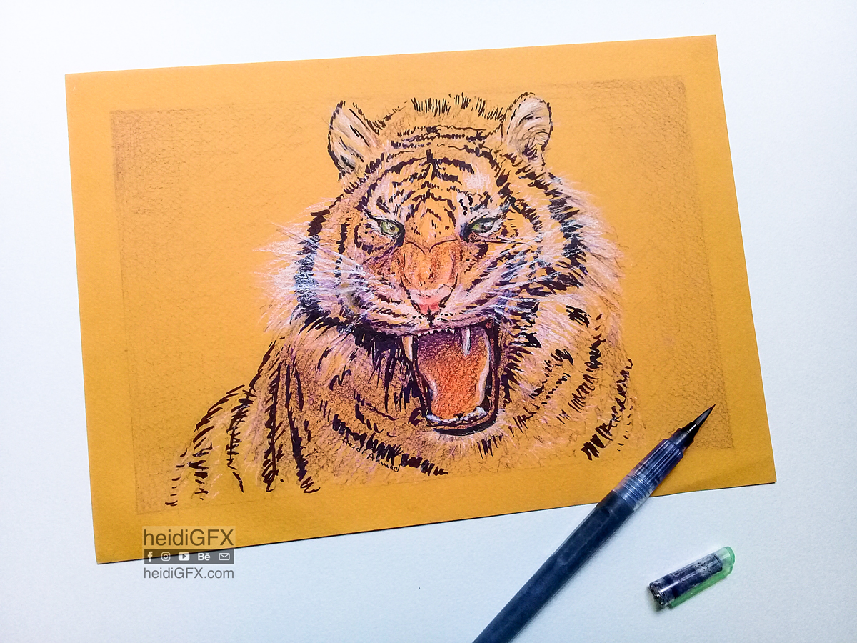 Traditional Drawing of a Tiger