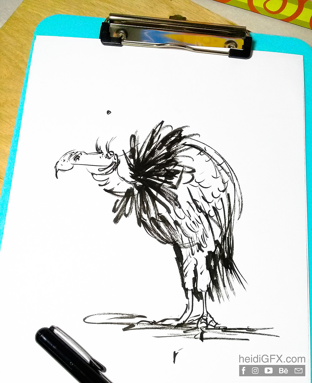 Pentil Brush Pen Drawing Practice - Bird