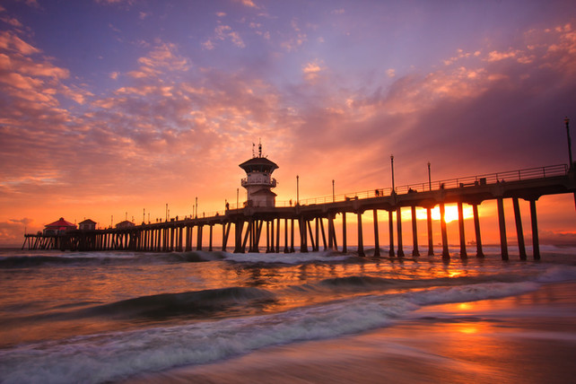 Surf City Guide