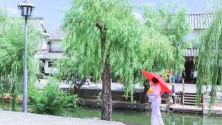 10:00 倉敷散歩 和服で散歩がしたくなるまち
