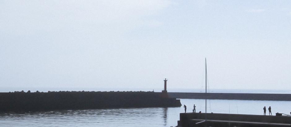 真鶴散歩 港の風景
