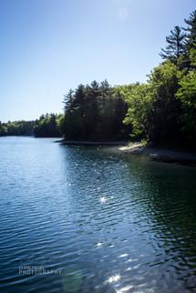 Walden Pond-37.jpg