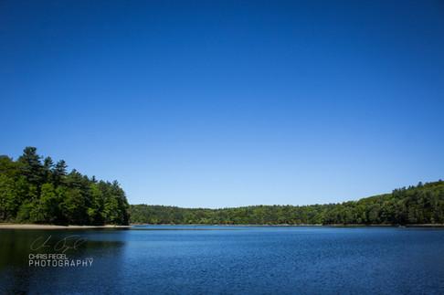Walden Pond-41.jpg