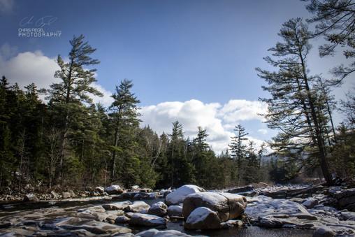 White Mountains-12.jpg