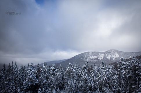 White Mountains-5.jpg