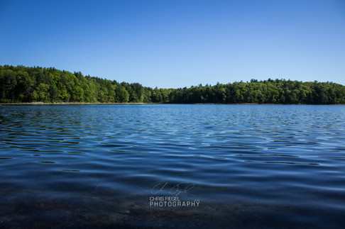 Walden Pond-68.jpg
