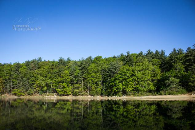 Walden Pond-3.jpg