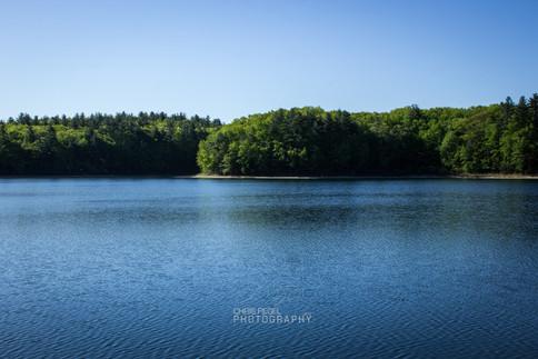 Walden Pond-65.jpg