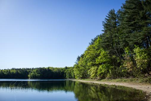 Walden Pond-36.jpg