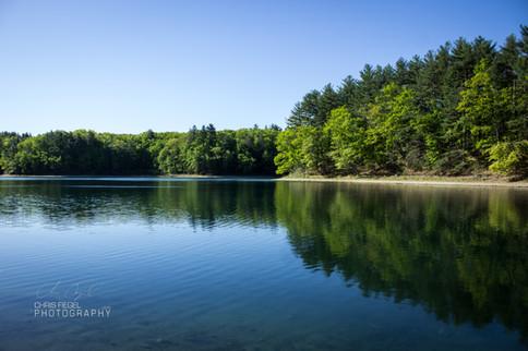 Walden Pond-34.jpg