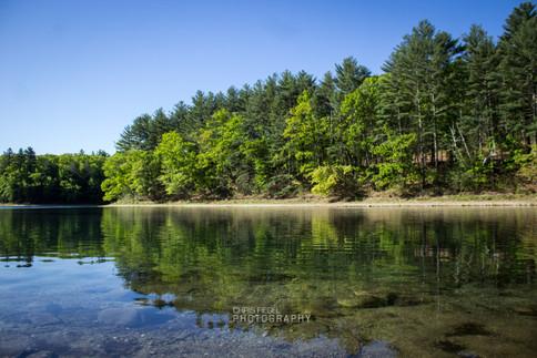 Walden Pond-66.jpg
