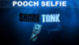 Pooch Selfie.jpg