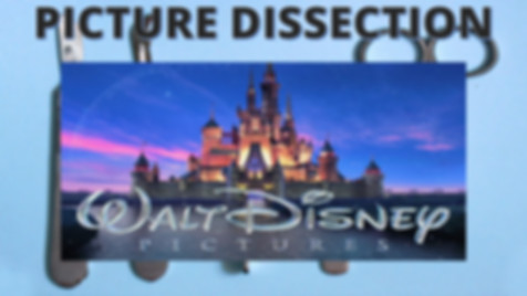 Picture Dissection Disney.jpg