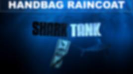 Handbag raincoat.jpg