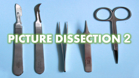 Picture Dissection 2 test.jpg