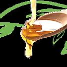 honey-spoon.png