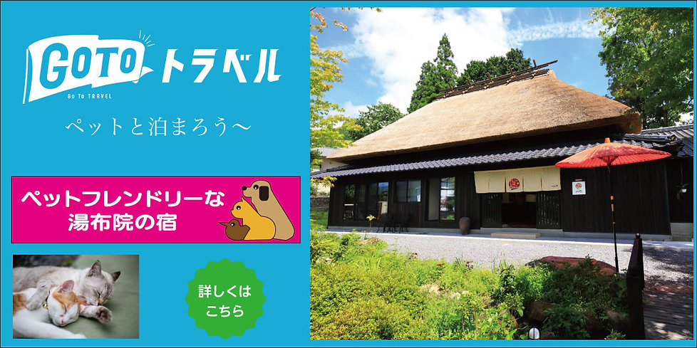 Goto2 bn_1200-600.jpg