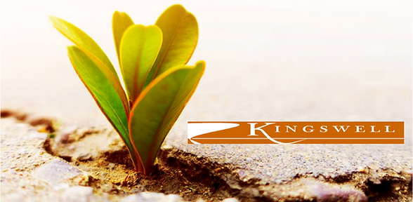 missional%20leadership%20banner_edited.p