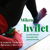 Mikrohviletcover.png