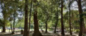 Serra Park (1000x750).jpg