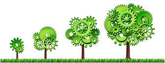 growth-trees.jpg