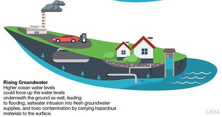 Groundwater rise.JPG