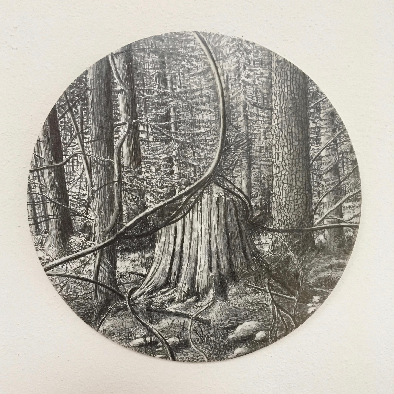 Dietmar Franz: Naturgeil 2, 2014